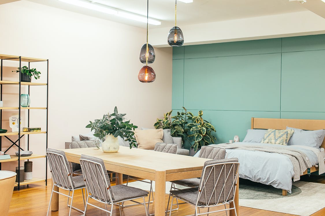 Modern light studio decorated with wooden table with vase with plant and chairs under lamps near couch and bed with carpet near shelves
