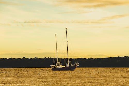 Gratis lagerfoto af mastro de veleiro, pexels, pexels meetup, pexelschegou