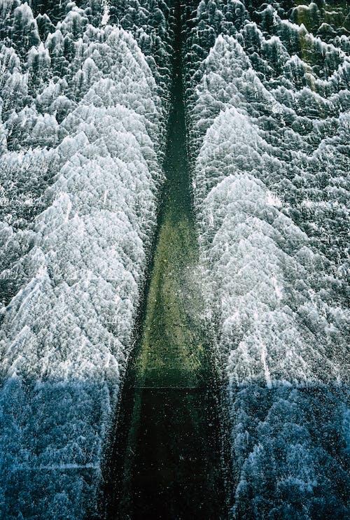 คลังภาพถ่ายฟรี ของ H2O, ICEE, กลางแจ้ง, น้ำ