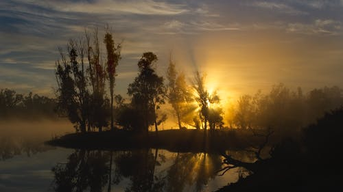 Free stock photo of big river, river murray