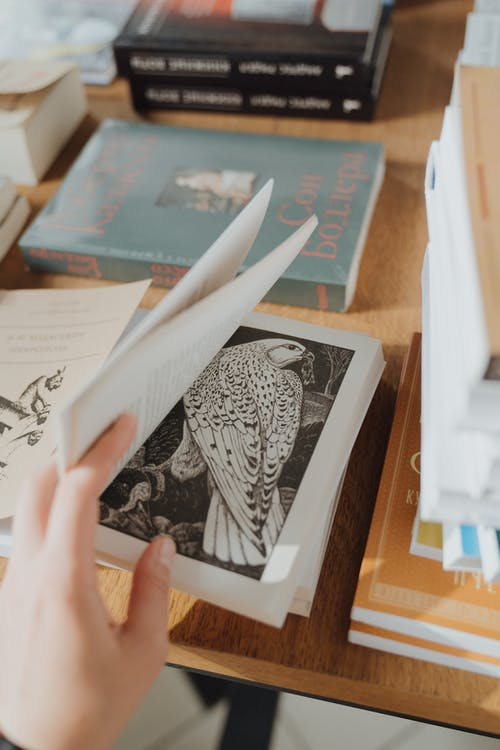 Person Holding a White and Black Book