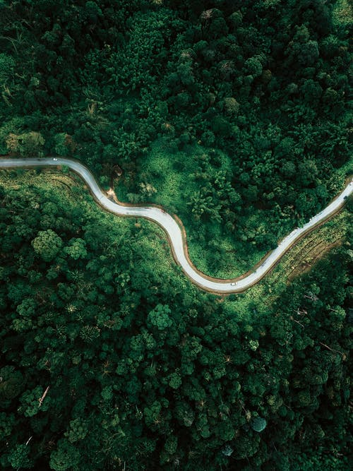 Aerial view of empty asphalt roadway running between lush abundant woodland in tropical country
