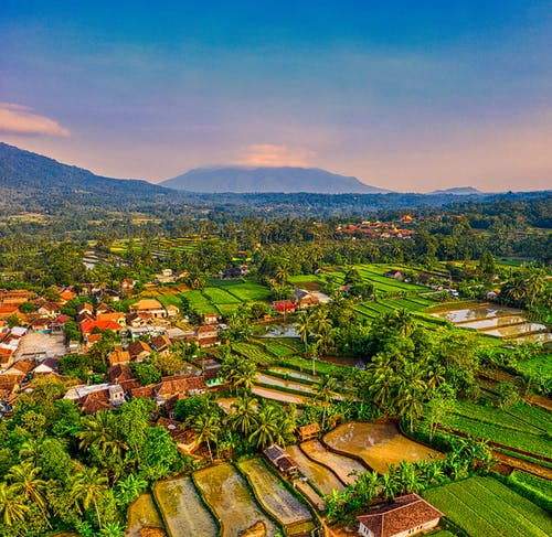 Aerial View of Rice Terraces Beside Town