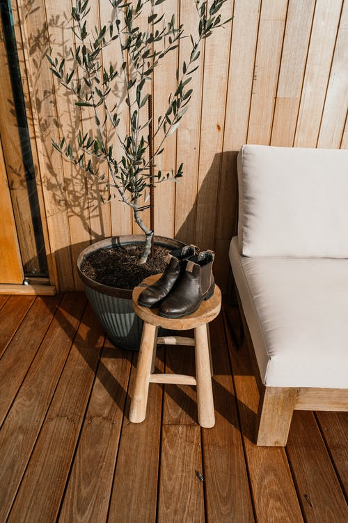 High angle of pair of leather boots placed on wooden stool near sofa and potted plant at home