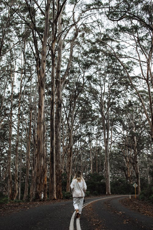 Full length back view of anonymous female in casual clothes walking along empty narrow road between tall trees