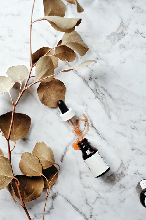 Brown Leaves on White Snow
