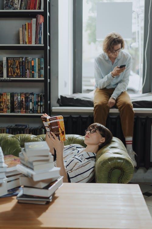Photos gratuites de auto-éducation, bibliothèque, canapé, casser
