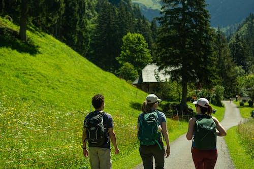 Základová fotografie zdarma na téma batoh, cestovní ruch, hory, příroda
