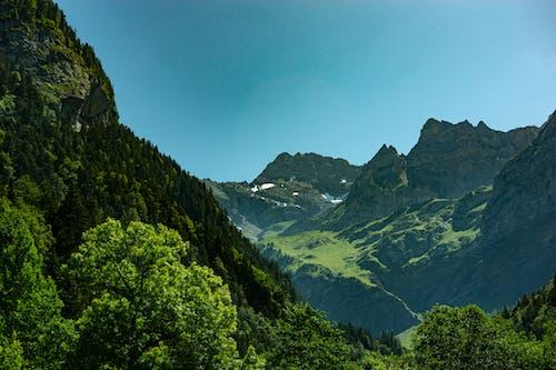 Základová fotografie zdarma na téma #příroda, les, zelené hory