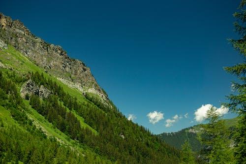 Kostenloses Stock Foto zu berge, grün, himmel, hügel