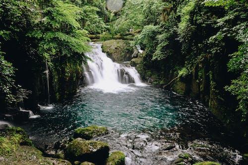 Kostnadsfri bild av bäck, berg, flod
