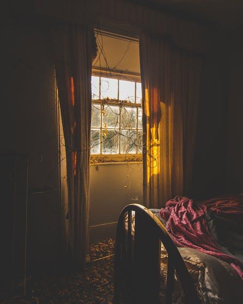 アーベックス, インドア, カーテン, ダークの無料の写真素材