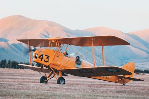 Żółty I Czarny Samolot Na Brązowym Polu