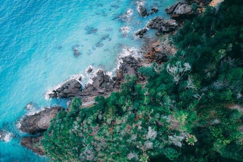 Rocky coast with lush green vegetation near wavy sea