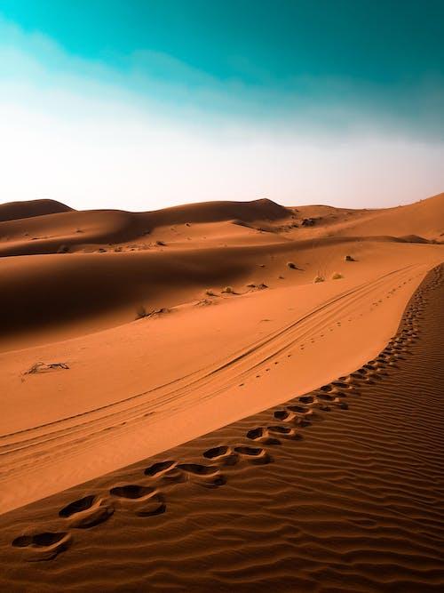 Footsteps on a Desert