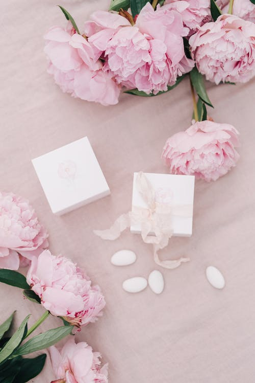 Pink Roses Beside White Card