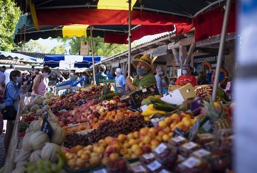 Gratis stockfoto met dimanche, fruit, marcherer, matin
