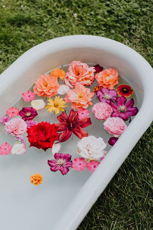 Pink and White Flowers in White Ceramic Bowl