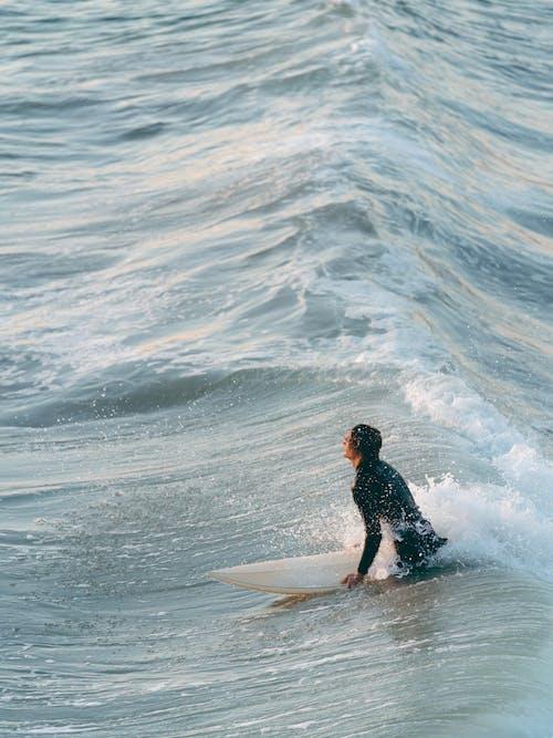 Imagine de stoc gratuită din acțiune, agrement, apă, călătorie