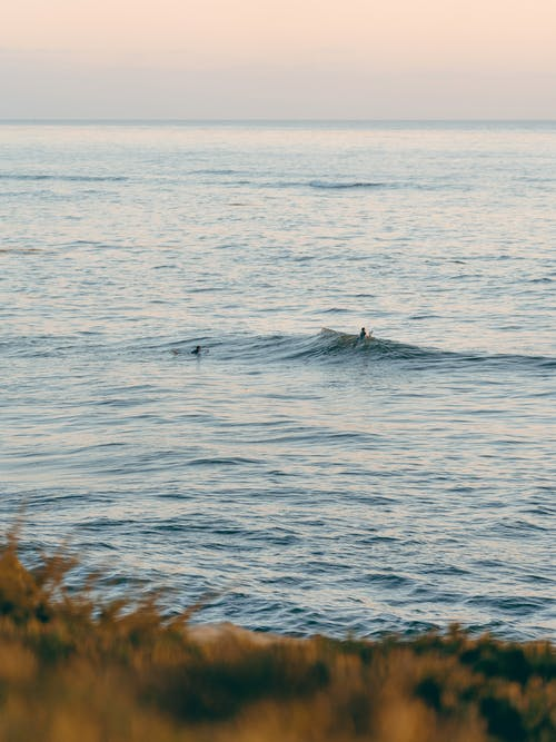 Imagine de stoc gratuită din apă, apus, călătorie, coastă
