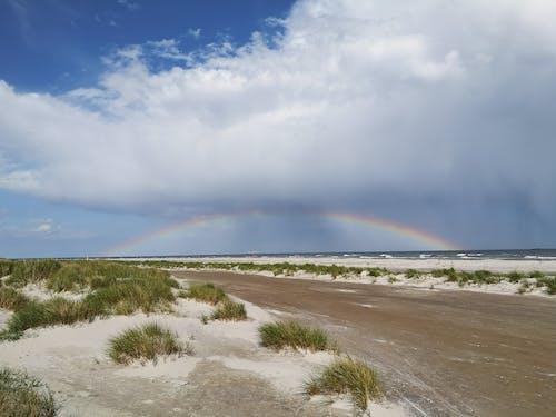 Free stock photo of beach, rainbow