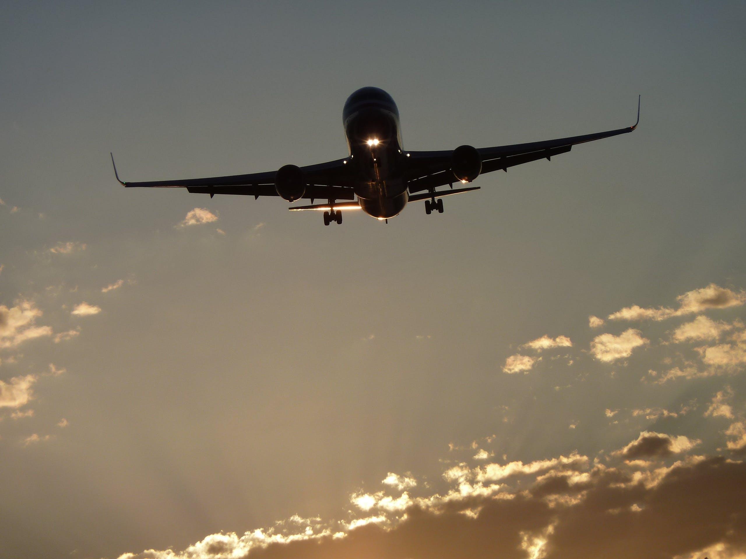 Kostenloses Stock Foto zu flug, dämmerung, himmel, silhouette