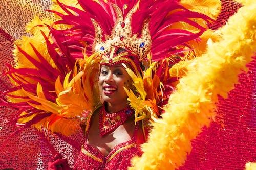 Gratis lagerfoto af Brasilien, cariwest, farverig, fjer