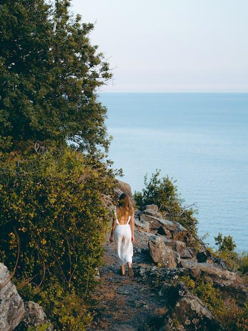 Imagine de stoc gratuită din cale, coastă, femeie, mare
