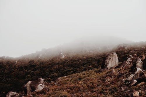 Fotos de stock gratuitas de al aire libre, colina, con niebla, montaña
