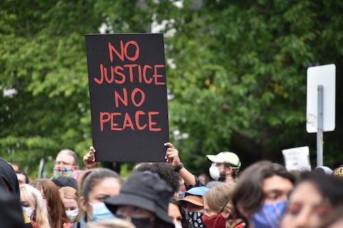 Fotos de stock gratuitas de activismo, activistas, acto electoral