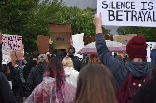 Fotos de stock gratuitas de acto electoral, el silencio es traición, juntarse
