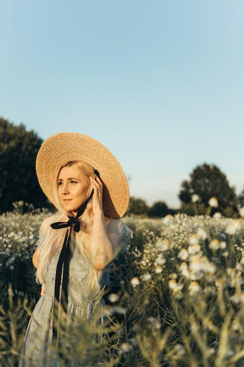Kostenloses Stock Foto zu blond, blumenfeld, draußen