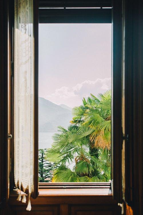 Photos gratuites de à l'intérieur, architecture, articles en verre, bois