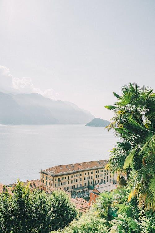 Photos gratuites de arbre, architecture, bord de mer, côte