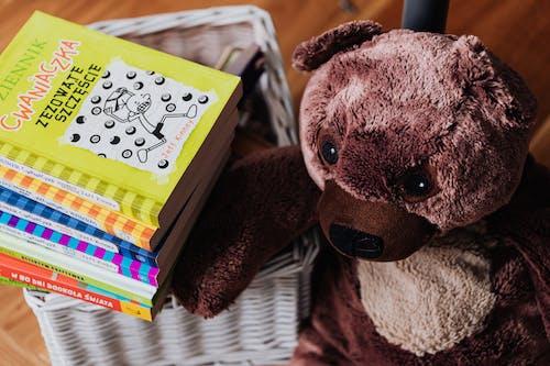 Fotos de stock gratuitas de animal de peluche, cuarto de los niños, educación