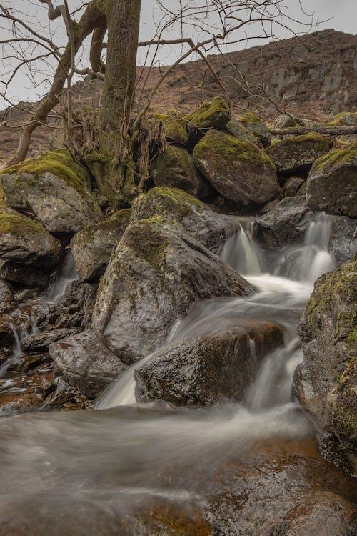 Δωρεάν στοκ φωτογραφιών με rock, άγριος, βράχος, βρεγμένος