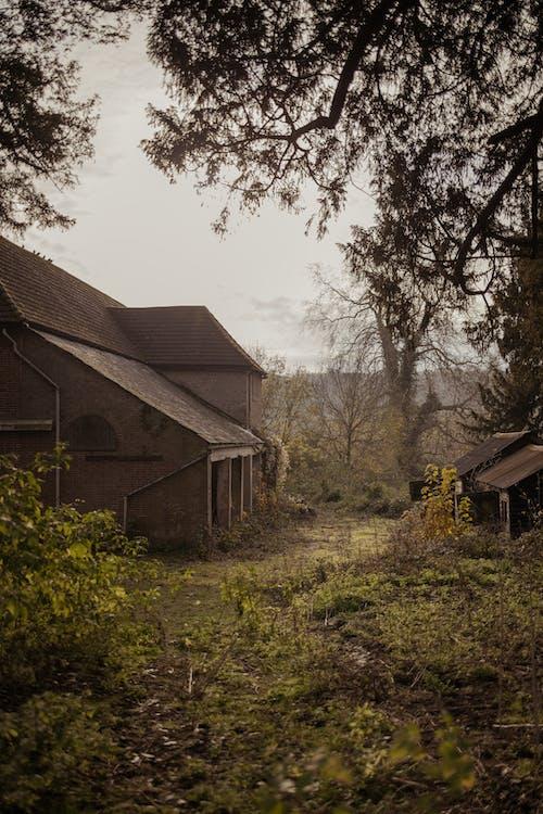 Δωρεάν στοκ φωτογραφιών με αγροτικός, αρχιτεκτονική, γρασίδι, δέντρο