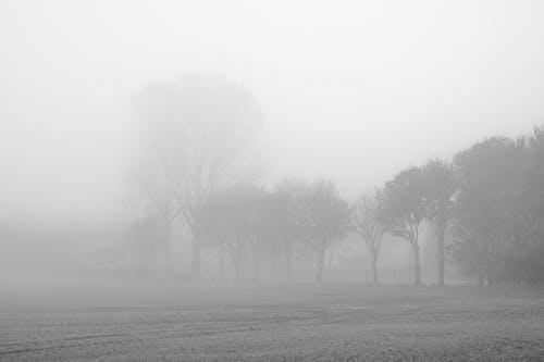 Δωρεάν στοκ φωτογραφιών με ασπρόμαυρο, αυγή, αχλή, βροχή