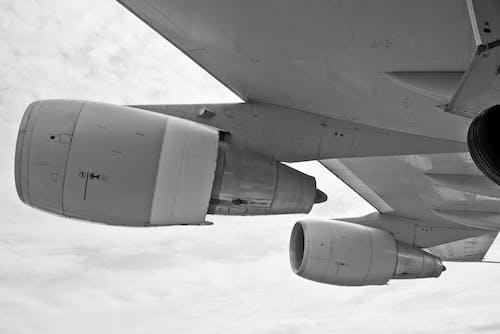 블랙 앤 화이트, 비행, 비행기, 하늘의 무료 스톡 사진