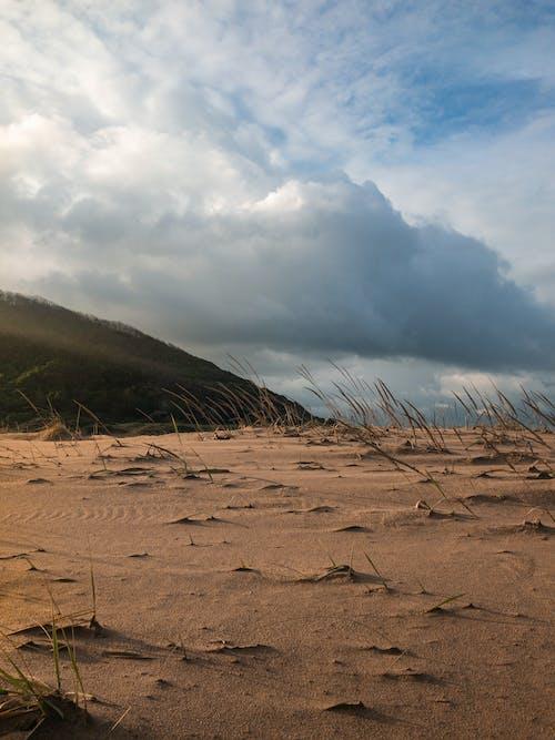 Photos gratuites de aride, aube, beau