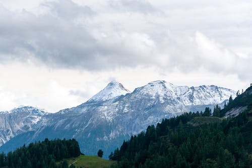 Snowy mountain range and green coniferous forest located against cloudy sky in nature