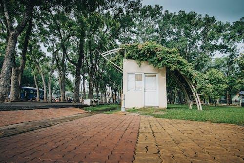Foto stok gratis Arsitektur, bangunan, bimbingan, di luar rumah