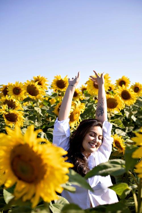 Cheerful happy woman with hands up in sunflowers
