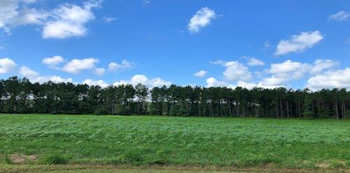 Kostenloses Stock Foto zu ackerland, hinterland