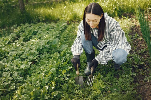 Woman In White And Black Striped Long Sleeve Gardening