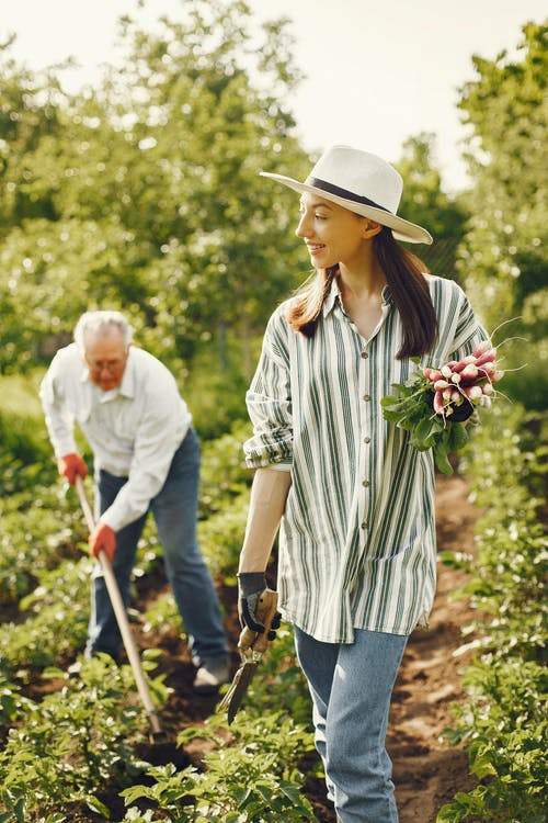 Man And Woman Gardening