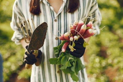 Woman Holding Radish And Gardening Tools