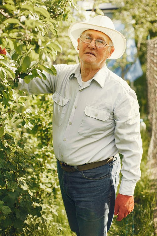 Man In White Dress Shirt And Blue Denim Jeans Standing Near Green Plants