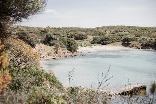 Ilmainen kuvapankkikuva tunnisteilla acqua, asinara, hiekka, hiekkaranta