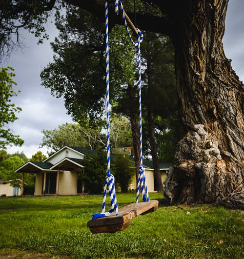 Imagine de stoc gratuită din arbore, atmosferă sumbră, Casă la țară